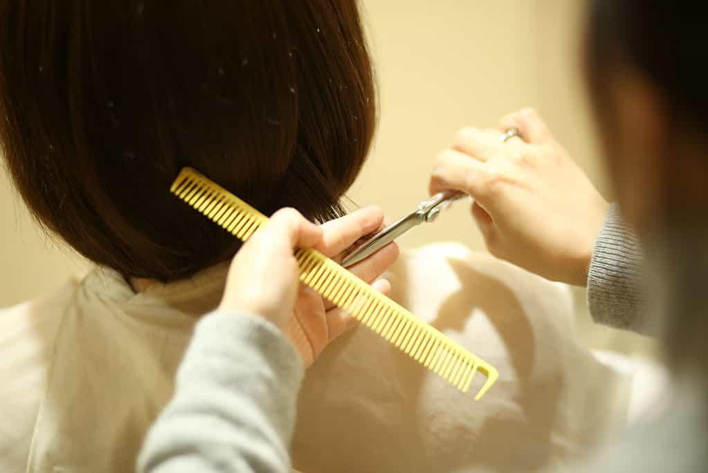 美容師になる方法